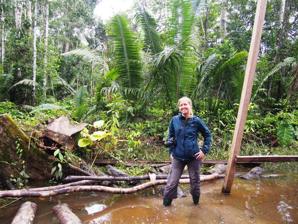 Lasy deszczowe, Amazonia, Peru
