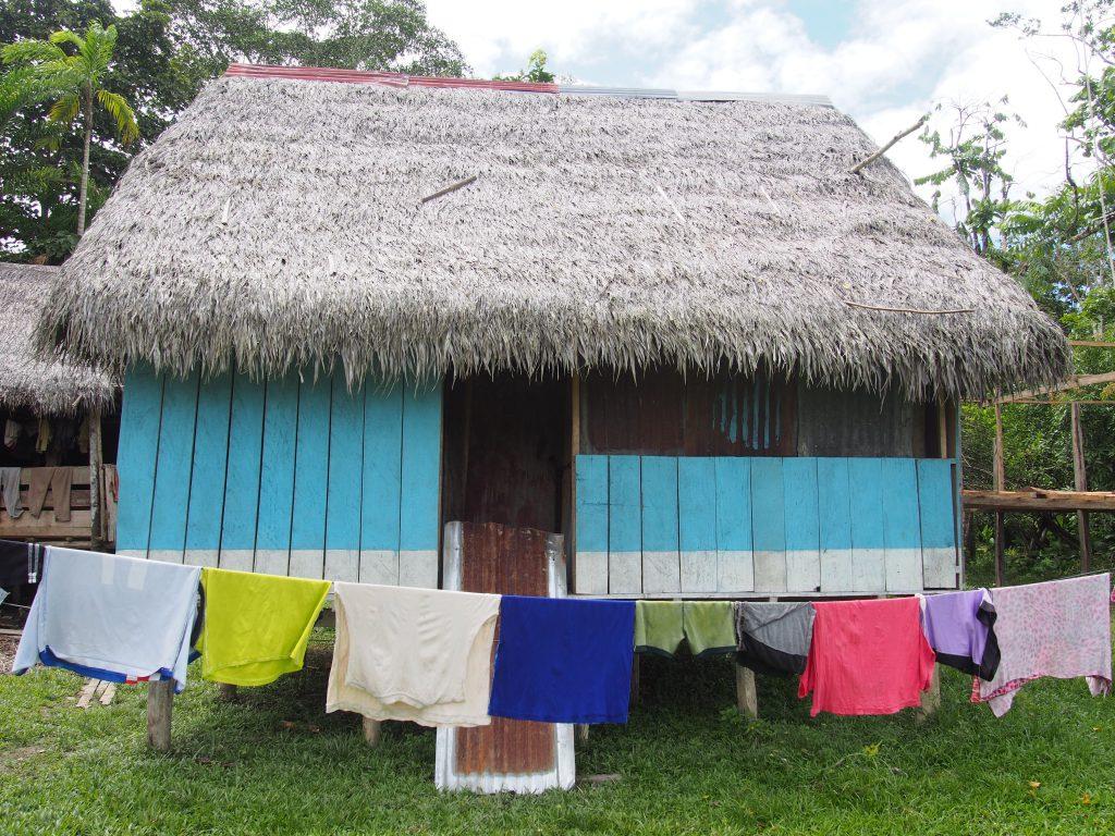 Amazonia, Peru